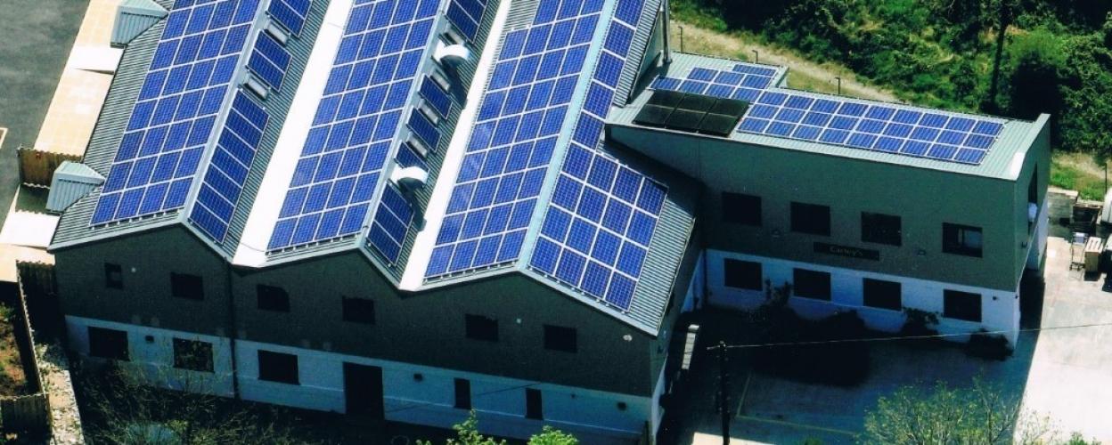 Carleys Organic Solar